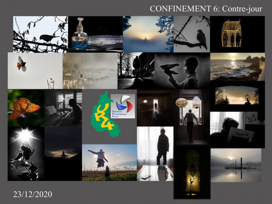 Concours/confinement 6 : Contre-jour